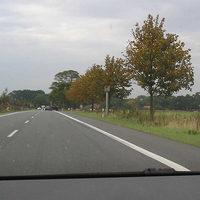 """Fahrtrichtung Lüneburg aus Richtung Uelzen ca. 500m vor dem Ortseingang auf freier Strecke, erlaubt 100 km/h - durch die Bäume nicht unbedingt von weitem sichtbar, davon zeugen auch die zahlreichen Bremsspuren. Irgendwie auch keine Stelle, mit der man unbedingt mit einer Geschwindigkeitskontrolle rechnet. Die Anlage wird vermutlich vor allem bei Dunkelheit einen Haufen ortsunkundige """"Kunden"""" finden..."""
