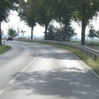 Eine baumgesäumte Straße...