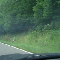 Auf dem Autobahnzubringer Richtung Untergruppenbach. Hier  wurde am 1. August kurz nach der Verengung von 2 Spuren auf eine Spur geblitzt. Hier gilt 70.  Der weiße Messbus der Verkehrspolizei stand versteckt auf einem Waldweg rechts vom Blitzer.