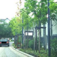 Sehr gut getarnt: Der Bus stand wohl oben auf dem Parkplatz, die Geräte mitten in den kleinen Bäumen. Auf diesem Bild kann man die Lichtschranke sehen (rot eingerahmt). Der BMW versucht auch noch bremsend das schlimmste zu verhindern.