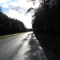 Strahlender Sonnenschein! Teilweise war durch die noch nasse Straße wirklich kaum noch was zu sehen abseits der Straße.