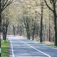 Anfahrtsansicht-Unfallschwerpunkt, daher Reduzierung der Geschwindigkeit von 100 über 80 auf 60 km/h.