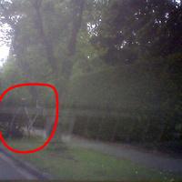 Leider nur schlechtes Handybild. Zu sehen ist Blitz und Kamera. Einheiten standen sehr gut versteckt hinter Bäumen. Kaum/ nicht zu sehen.