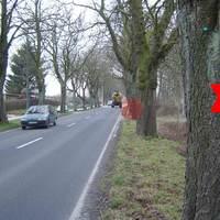 Blick die Allee entlang. Hinter dem Baum mit dem Kreuz ist der Parkplatz, wo der grün-weisse Vito parkt. Kaum eine Chance, da die Strasse hier schon einen Kilometer geradeaus geht und zwischen den Bäumen auf die Entfernung kaum was zu erkennen ist.