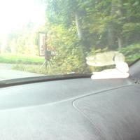 Stadt Heilbronn mit Firma ERA, auf der Verbindungsstraße zw Leingarten(Umspannwerk) und HN-Frankenbach beidseitig in der Einfahrt zum Motocross-Gelände bzw. gegenüber auf dem Feldweg. Messwagen war ein dunkelroter Vito ( stand hinter der HEcke). Wenn man den Fotoapparillo gesehen hat war es schon zu spät - sehr gut versteckt.