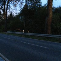 Im Anschluß an die Messung in Lübstorf wurde das Gerät kurzerhand etwa 2 km weiter in Richtung Schwerin aufgebaut. Das Gehöft auf der anderen Straßenseite nennt sich 'Kronshof'. Im Hintergrund schimmert noch etwas Licht vom Meßwagen durch's Gebüsch.