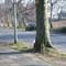 Seitenansicht des schwarzen Opel Astras. Fast täglich im Einsatz in Duisburg.