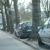 Zwischen zwei Bäumen geparkt blitzt der schwarze Teufel.