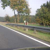 Leider nur ein Bild da das aussteigen bzw. Parken an der Straße unmöglich war. War der weiße T4 aus Bamberg. Stand rechts in einer Böschung vor dem Gerät.