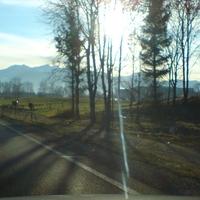 leider schlechte Bildqualität durch tiefstehende Sonne und Gegenlicht