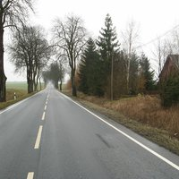 Anfahrt Rtg. Schwerin. Wer genau hinschaut, erkennt die durch Getrüpp getarnten Fotogeräte für die Gegenseite. Bei >100km/h eher theoretische Chance. Orientierend sollte der Baum rechts betrachtet werden.