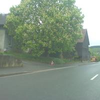 ein Hinweis Richung Kronach für aufmerksame Fahrer: das Hütchen links fiel auf (Lichtschranke dahinter)
