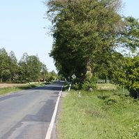 Anfahrtsansicht: Aufgrund zahlreicher Unfälle wurde die gesamte Strecke zwischen Neuscharrel und Friesoythe auf 80 km/h begrenzt