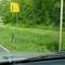 Die Zoom- Digitalkamera im gemähnten Gras, Richtung Bilsen / Quickborn!