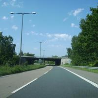 Anfahrtsansicht kurz nach der Überquerung der Südwesttangente. Die rotumrandeten Schilder kündigen die Reduzierung des Tempos von 80 auf 60 km/h an.
