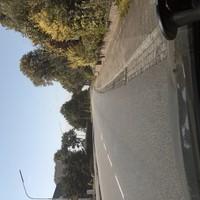 Hauptstraße in Krumstedt, Straße lädt gern zum etwas schnelleren fahren ein.