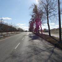 """Anfahrtsansicht. Vierspurige Straße mit Grünstreifen. Rechts das Wohngebiet """"Neue Gartenstadt"""". Es gelten 50 km/h."""