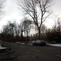 Ansicht aus der Paracelsusstraße.