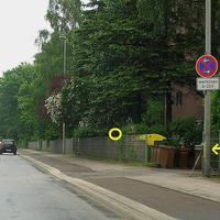 Im Kreis markiert die Digital-Zoom Kamera, davor der Wabenfilter Blitz in der Hecke hinter dem Zaun ... Der Sensor beim gelben Pfeil !