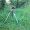 Kamera mit Polfilter