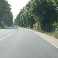 Anfahrt aus Heeren in Richtung Kamen auf den gut im Grünen versteckten und stets scharfen Starenkasten.  Bild 5