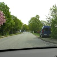 """Der blaue Fiat """"Hundefänger"""" lasert aus dem Heckfenster, steht gut getarnt hier frischem Grün..."""