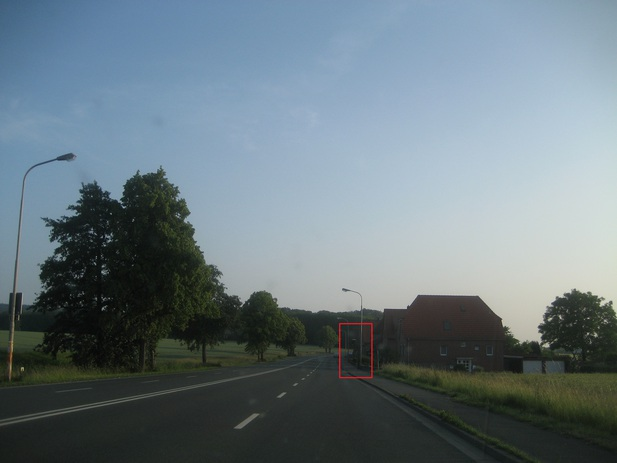 Normal_img_8138