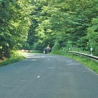 Der Eingangsbereich des Waldweges, in dessen Verlauf der Messbus parkte, diente auch zur Anhaltung geahndeter Fahrzeugführer.
