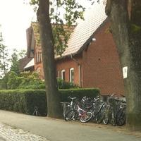 Foto in Richtung Reesenhöh/Steindamm
