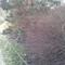 Thumb_20120220_114542