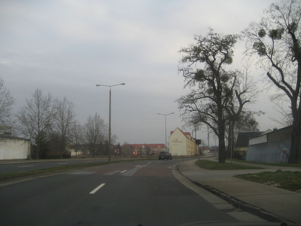 Normal_img_4363