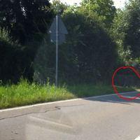 Einfahrt Krumwälden, gleich nach Ortsschild, Richtung Ortsmitte, auf gegeüberliegender Straßenseite, in privater Einfahrt