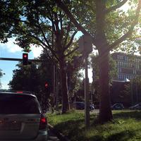 Blitzer an Kreuzung seitens Papiermühlestrasse