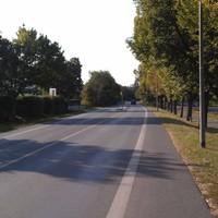 Richtung Stockstadt/Riedst. - Goddelau