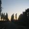 Thumb_img_1542