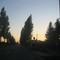 Thumb_img_1544