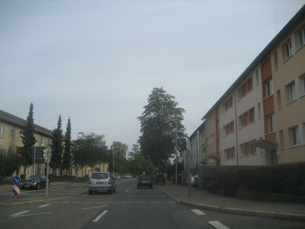 Normal_img_2012