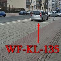 Wolfenbüttel, auf der Langen Straße, nach dem Zebrastreifen beim Lessingtheater Richtung Innenstadt. 30iger Zone! Silberner Skoda Roomster (WF-KL-135).