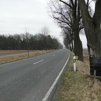 der Opel Astra Kombi des LK Rtg Peine fahrend. Der aufmerksame Fahrer hätte die Stelle aber erkennen können, hinzu kommt, dass man hier ohnehin nicht allzu schnell fahren sollte, wie das Kreuz beweist!