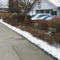Fahrzeug stand auf dem Aldi Parkplatz hinter einer Hecke, Messtechnik gut im Gebüsch versteckt.