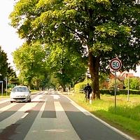 """Die """"Messknechte"""" stehen hintereinander unter'm Baum um die KFZ in Rtg. Renzow fahrend zu messen..."""