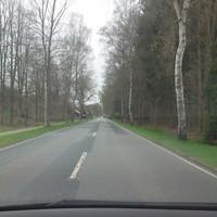 Anfahrt aus Soltau, noch vor der Ortschaft