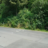 Einrichtung direkt im Gebüsch versteckt! Fahrzeug steht auf der anderen Seite des Gebüschs auf einem Fußweg.