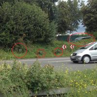 Hier sind gut sowohl die Messgeräte als auch der Messwagen zu erkennen, welcher in Fahrtrichtung sehr gut getarnt hinter den Büschen steht.