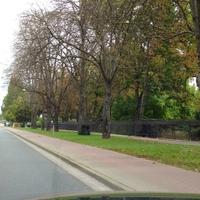 Mobiler Blitzer mit Tarnnetz in Fahrtrichtung Hohenerxleben
