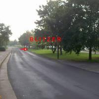 Blitzer ist sehr schlecht vorher zu sehen. Rechts vor Strauchwerk / Gebüsch. Im Hintergrund steht eine Litfaßsäule. KEIN Schulweg, aber 30er Zone.