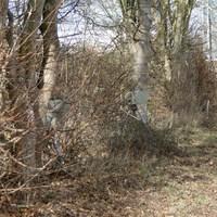 Messung Rtg. Rosenthal/Hildesheim fahrend bei 100kmh! Messwagen stand hinter den Büschen geparkt