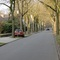 in der Kastanienalle Rtg. Sundernstraße fahrend, roter Opel (PE T 189)!