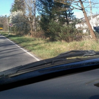Beidseitig, Messfahrzeug rechts, ESO 3.0 Sensor im Nadelbaum.