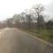 Anfahrt, die Messstelle befindet sich nun deutlich VOR der Kreuzung, aber gleiche Fahrtrichtung Celle/Schwarmstedt Fahrtrichtung Nienburg.  Da es doch recht anders als 2010 im Sommer aussieht hab ich das Bild mit reingenommen.